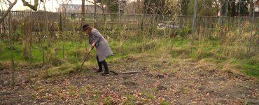 Op het terrein waar Ut Rooie Bietje zat gevestigd, ontspruit op dit moment een nieuw groen initiatief: Un Bietje Groen. Vanaf 1 januari gaat de stichting het terrein aan de Koningshoeven in gebruik nemen.
