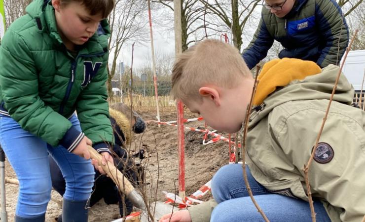 Leerlingen van sbo Westerwel in de Reeshof hebben zo'n 1000 bomen geplant aan het Biervlietplein. Deze bomen vormen samen een 'tiny forest', ofwel mini-bos.